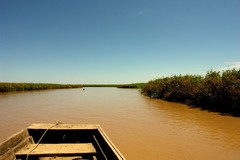 River, Amazon, Bolivia, Crossing, Holiday, Nature, Calm