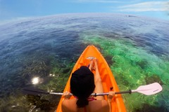 Beach, Kayak, Reef, Honduras, Sea